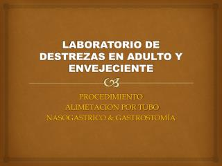 LABORATORIO DE DESTREZAS EN ADULTO Y ENVEJECIENTE
