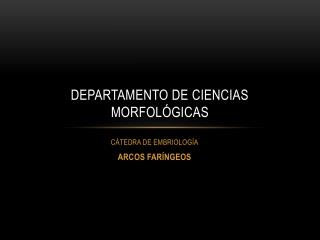 DEPARTAMENTO DE CIENCIAS MORFOL GICAS