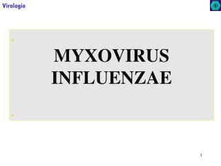 . MYXOVIRUS INFLUENZAE .