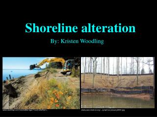 Shoreline alteration