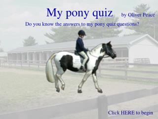 My pony quiz