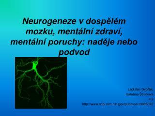 Neurogeneze vdospělém mozku, mentální zdraví, mentální poruchy: naděje nebo podvod