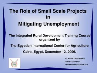 The Role of Small Scale Projects in  Mitigating Unemployment