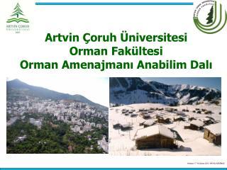 Artvin Çoruh Üniversitesi  Orman Fakültesi Orman Amenajmanı Anabilim Dalı