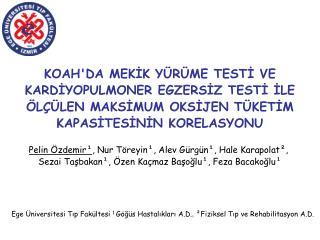 Pelin Özdemir¹ , Nur Töreyin¹, Alev Gürgün¹, Hale Karapolat²,