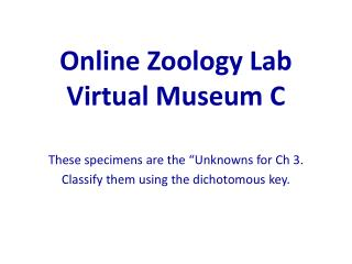Online Zoology Lab Virtual Museum C