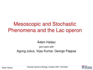 Mesoscopic and Stochastic Phenomena and the Lac operon