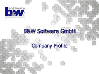 B&W Software GmbH