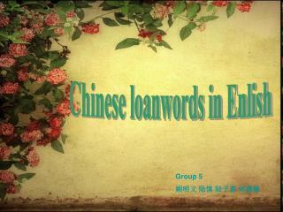 Chinese loanwords in Enlish
