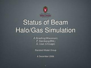 Status of Beam Halo/Gas Simulation