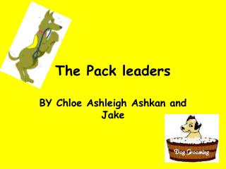 The Pack leaders