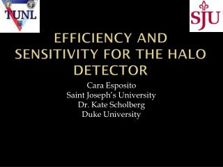 Efficiency and Sensitivity for the HALO Detector