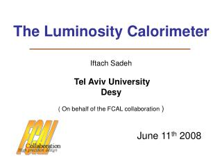 The Luminosity Calorimeter