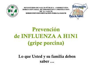 Prevención  de INFLUENZA A H1N1  (gripe porcina)