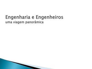 Engenharia e Engenheiros uma viagem panorâmica