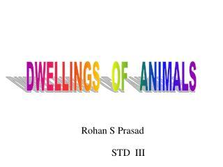 Rohan S Prasad
