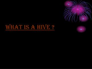 What is a hive ?