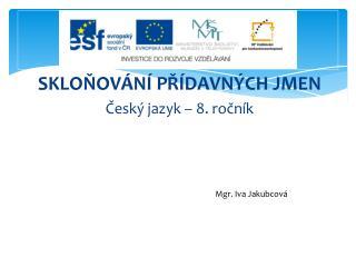 SKLOŇOVÁNÍ PŘÍDAVNÝCH JMEN Český jazyk – 8. ročník