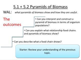 5.1 + 5.2 Pyramids of Biomass