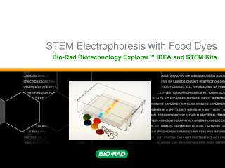 STEM Electrophoresis with Food Dyes