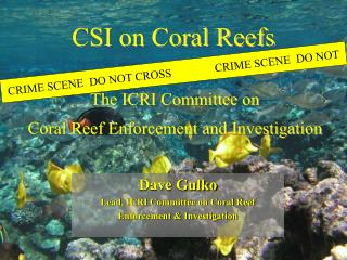 CSI on Coral Reefs