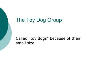 The Toy Dog Group