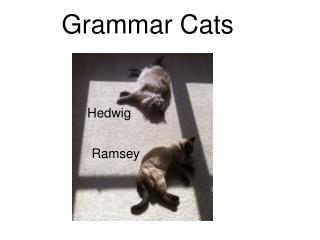 Grammar Cats