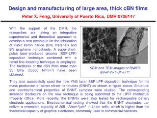 SEM and TEM images of BNNTs grown by SSP?LPP.