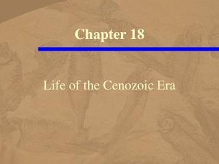 Life of the Cenozoic Era