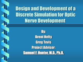 Design and Development of a Discrete Simulation for Optic Nerve Development