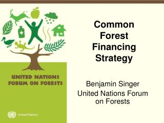 Common  Forest Financing Strategy