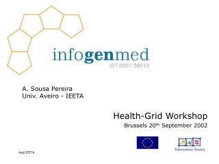 Health-Grid Workshop Brussels 20 th  September 2002