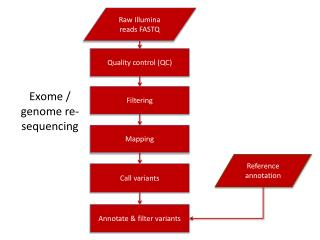 Exome / genome re-sequencing