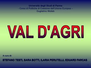Universit  degli Studi di Parma  Corso di Politiche di Coesione dell Unione Europea    Guglielmo Wolleb