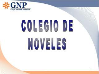 COLEGIO DE NOVELES