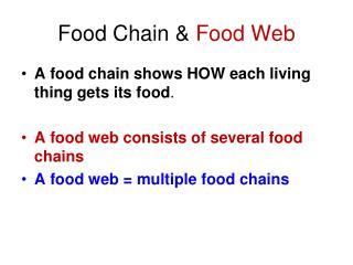 Food Chain &  Food Web