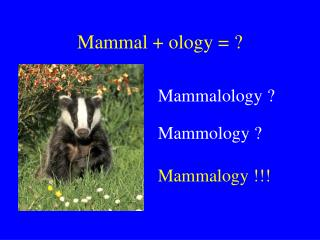 Mammal + ology = ?