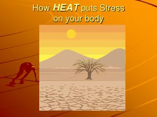 How  HEAT  puts Stress  on your body