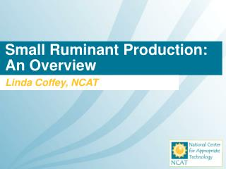 Small Ruminant Production: An Overview