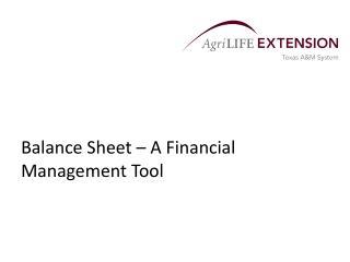 Balance Sheet – A Financial Management Tool