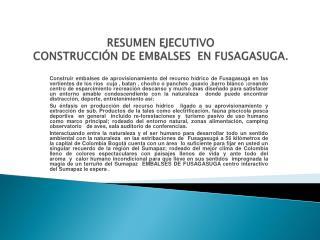 RESUMEN EJECUTIVO CONSTRUCCIÓNDE EMBALSES EN FUSAGASUGA.