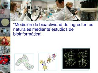 """"""" Medición de bioactividad de ingredientes naturales mediante estudios de bioinformática """"."""