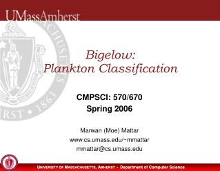 Bigelow:  Plankton Classification
