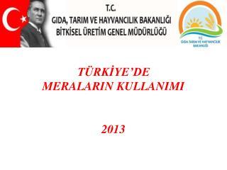 TÜRKİYE'DE  MERALARIN KULLANIMI 2013