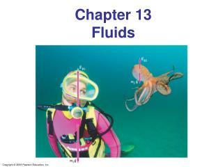 Chapter 13 Fluids