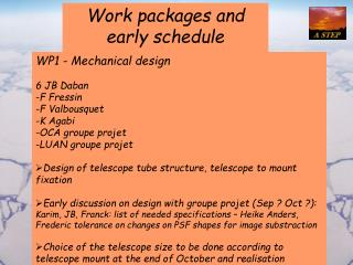 Work packages and early schedule