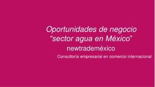 Consultoría empresarial  en  comercio internacional