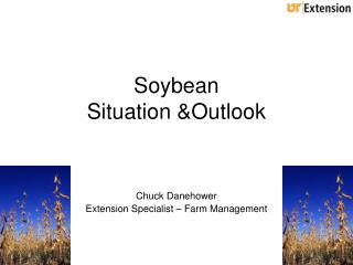 Soybean  Situation &Outlook