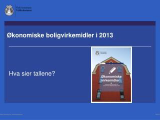 Ø konomiske boligvirkemidler  i 2013