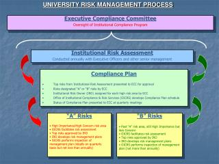 UNIVERSITY RISK MANAGEMENT PROCESS